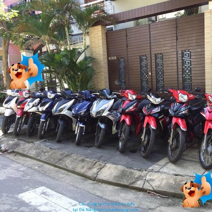thuê xe máy Nha Trang giá rẻ